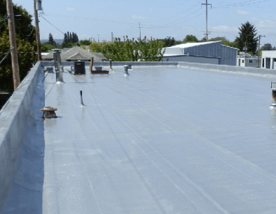 SPF Roofing Cons